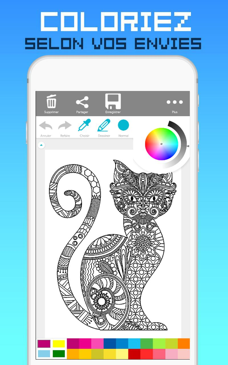 Ladybug And Cat Noir Livre De Coloriage для андроид