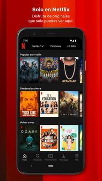 Netflix captura de pantalla 1