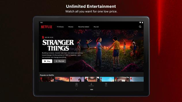 Netflix screenshot 16