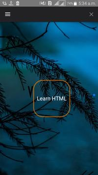 Learn HTML and CSS poster