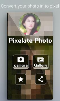 Pixelate Photo Maker poster