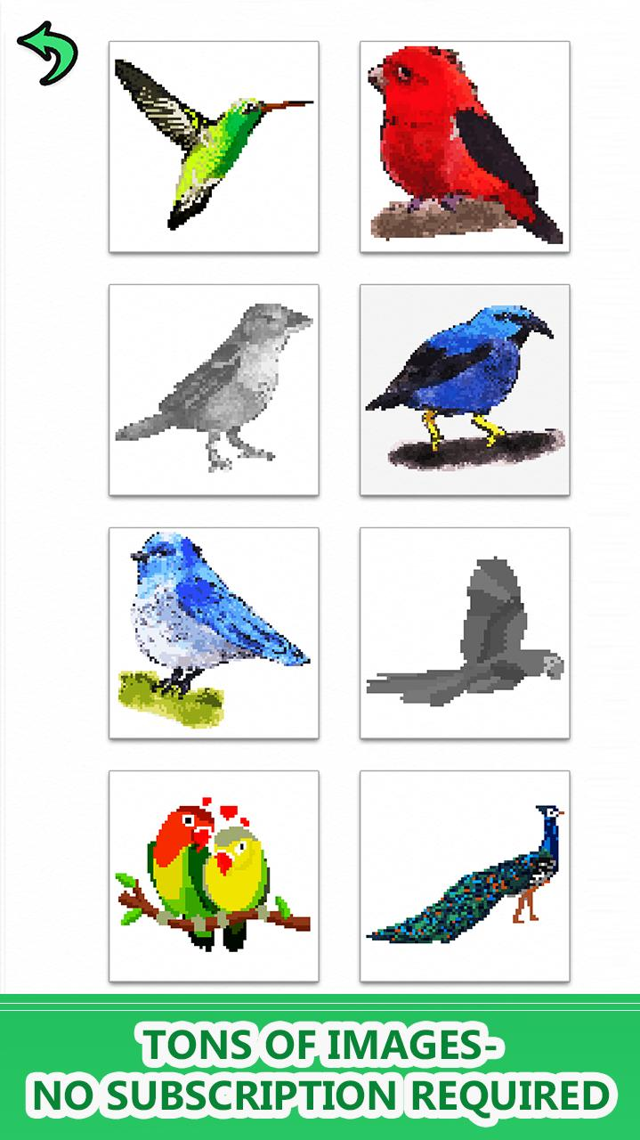 Birds Color By Number Pixel Art Sandbox Coloring для