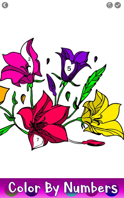 Adult Color by Number Book Paint Flowers Pages for