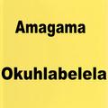 Amagama Okuhlabelela