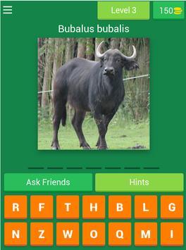 Guess The Animals screenshot 6