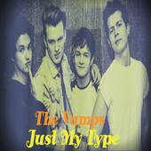 Just My Type Song icon