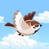 Zoomy Flight icon