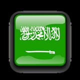 Saudi Arabia VPN