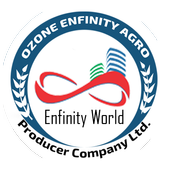 Ozonenfinity icon