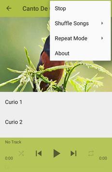 Canto De Curio screenshot 4