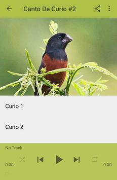 Canto De Curio screenshot 3