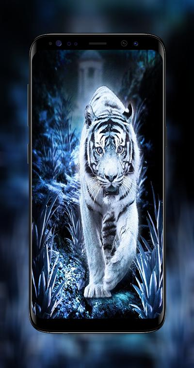 White Tiger Wallpapers 4k For Android Apk Download