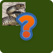 Guess Animal Name icon