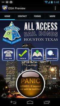 All Access Bail poster