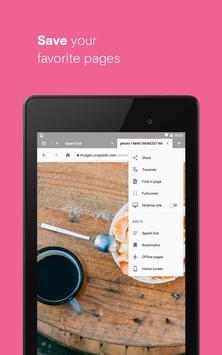 Opera browser beta screenshot 19