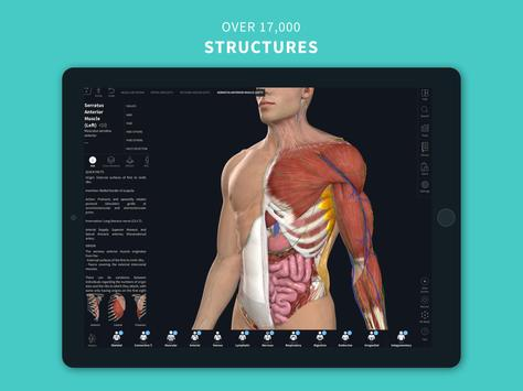 Complete Anatomy '21 - 3D Human Body Atlas screenshot 17