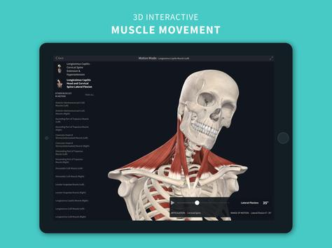 Complete Anatomy '21 - 3D Human Body Atlas screenshot 8