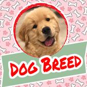 Dog Breed icon