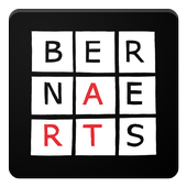 Auctioneers Bernaerts Live icon