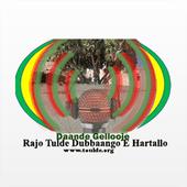 Radio Toulde icon