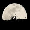 Resimli iyi geceler mesajları-icoon