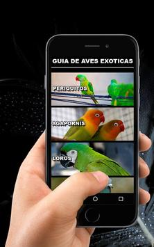 🐦 Aves Exoticas 🖼️ poster