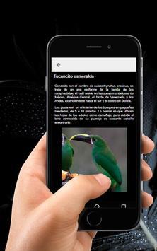 🐦 Aves Exoticas 🖼️ screenshot 3