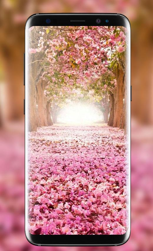 Spring Flowers Wallpapers Free 4k Backgrounds Hd For Android Apk Download Here is a collection of flower wallpapers for you, just click on a wallpaper of your choice, download it and set it as background of your desktop screen. spring flowers wallpapers free 4k