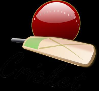 Play Cricket screenshot 10