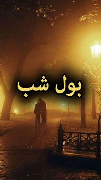 Bol Shab poster