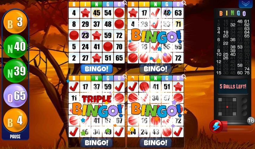 Bingo Kostenlos Download
