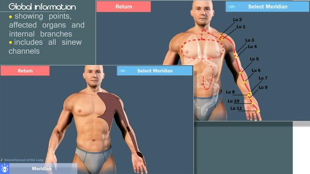 Easy Acupuncture 3D -FULL screenshot 3