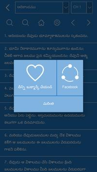 Telugu Bible Offline screenshot 3