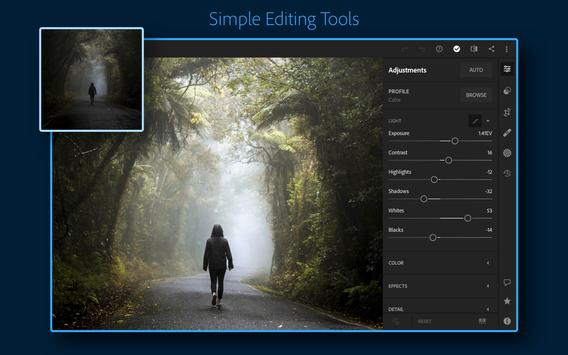Adobe Lightroom - Photo Editor & Pro Camera screenshot 8