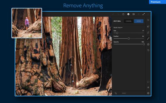 Adobe Lightroom - Photo Editor & Pro Camera screenshot 13
