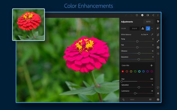 Adobe Lightroom - Photo Editor & Pro Camera تصوير الشاشة 10