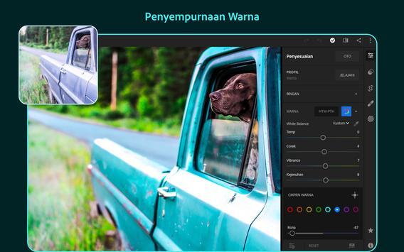 Adobe Lightroom - Editor Foto screenshot 10