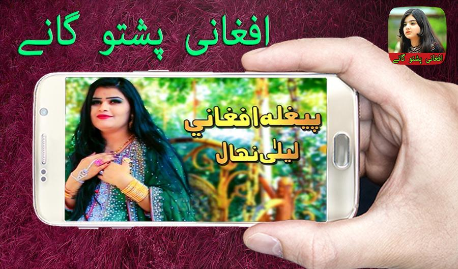 afghan pashto video songs free download
