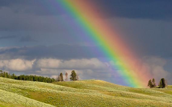 Rainbow Wallpapers screenshot 6