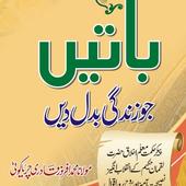 Baaten Jo Zindagi Badal Den Mufti Muhammad Afroz icon