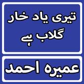 Teri Yaad Khar Gulab Hai By Umera Ahmed Urdu Novel icon