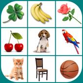 Brain game. Picture Match. biểu tượng