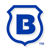 Brinks Home icon