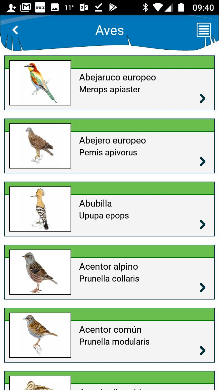 Aves De España For Android Apk Download