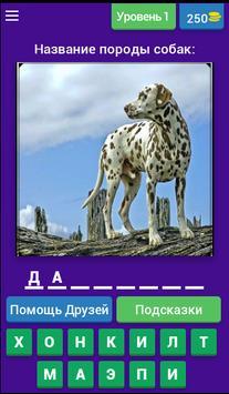 Угадай породу собак??? poster