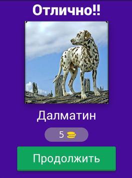 Угадай породу собак??? screenshot 15