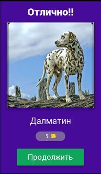 Угадай породу собак??? screenshot 1
