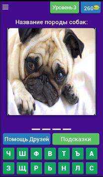 Угадай породу собак??? screenshot 3