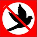 Anti bird sound