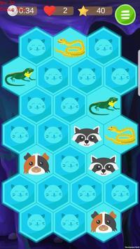 Find Pair. Super Memory Screenshot 3